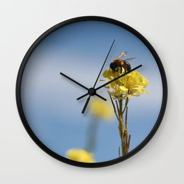 Honey bee on a wildflower Wall Clock