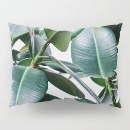 Tropical Elastica Pillow Sham