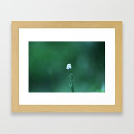 White In Green Framed Art Print