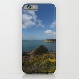 Jersey Vista iPhone Case