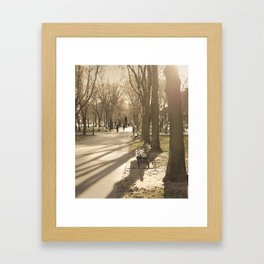 Early Spring, Late Afternoon Framed Art Print
