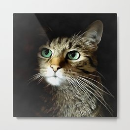 Tabby Cat With Green Eyes Isolated On Black Metal Print