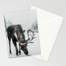 Moose in the wild Stationery Cards
