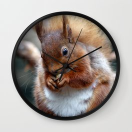 Hungry squirrel Wall Clock