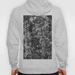 Black And White Pear Tree Blooming Hoody