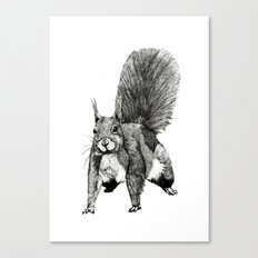 Pesky Squirrel Canvas Print