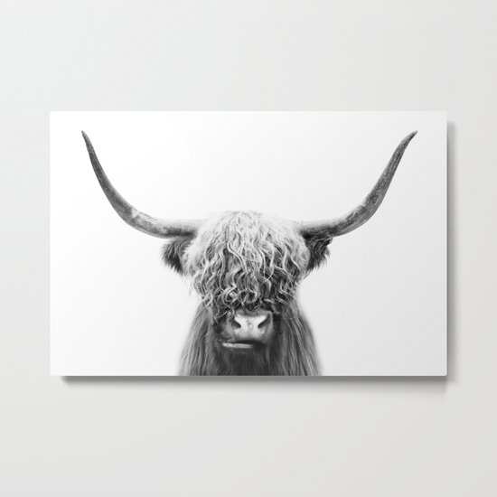 Scottish Highland Cow by taiprints