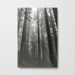 Echoes Metal Print