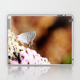 Gray Hairstreak Butterfly Laptop & iPad Skin