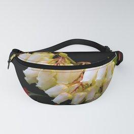 Pieris japonica Fanny Pack
