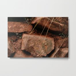 red rocks in the forest IV Metal Print