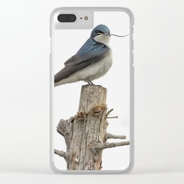Tree Swallow with Twig Clear iPhone Case