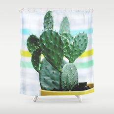 Summer Succulent Shower Curtain