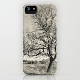 The tree iPhone Case