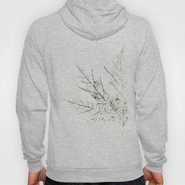 Maple Leaf Silhouette On  White Background Hoody