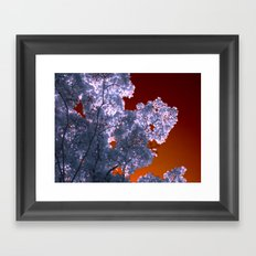 night colors III Framed Art Print