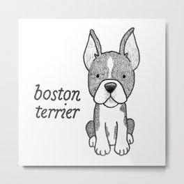 Dog Breeds: Boston Terrier Metal Print