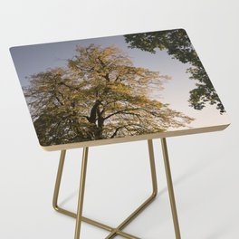 Perfect autumn-sunset colors Side Table
