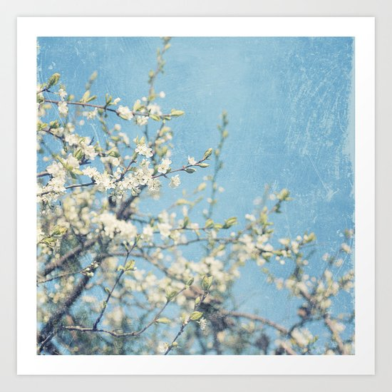 White and Blue Spring no. II Art Print