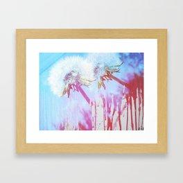 Siamese Dandies Framed Art Print