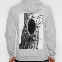 Hollow tree Hoody