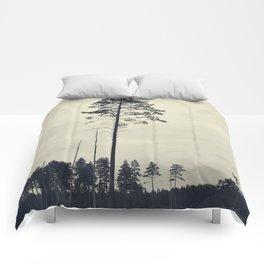 Pine tree 4 Comforters