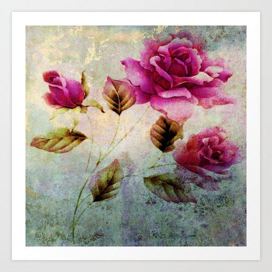 rosebush and textures Art Print