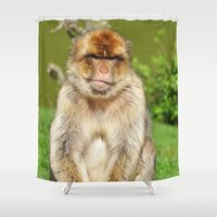 ape Shower Curtains featuring Barbary ape by Pirmin Nohr