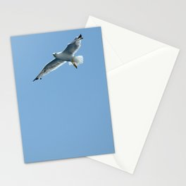 Seagull in Croatia #2 Stationery Cards