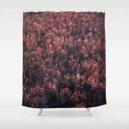 Glasswort Shower Curtain