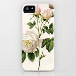 Vintage botanical illustration by P.J. Redoute. White rose flowers and butterflies. iPhone Case