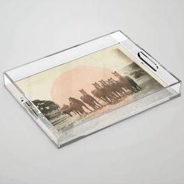 Band of Horses - Peach Acrylic Tray