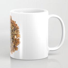 Maritime Sunburst Lichen Coffee Mug