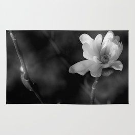 Magnolia Stellata  Rug