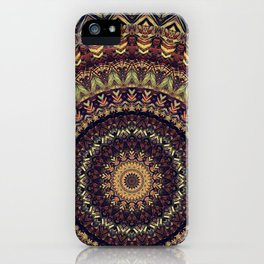 Mandala 252 iPhone Case