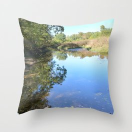 Where Canoes and Raccoons Go Series, No. 29 Throw Pillow