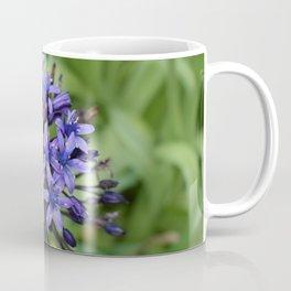 Portuguese Squill Flower Coffee Mug