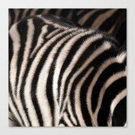 Zebra Print Photo Realism Canvas Print