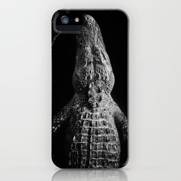 In Texas iPhone Case