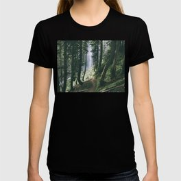 To The Falls T-shirt