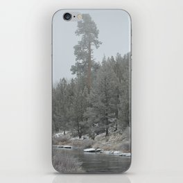 Old Ponderosa On The Deschutes River iPhone Skin