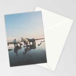 Camargue Horse II Stationery Cards