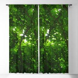 Deep Green Forest Blackout Curtain