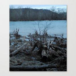 Violet's Lock Driftwood Canvas Print