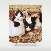 thundercats Shower Curtains featuring Three Kitties by Augustinet