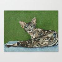 oz Canvas Prints featuring Oz by Cat Art by Lori Alexander