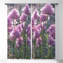 Wild chives flowering Blackout Curtain