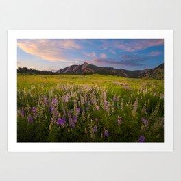 Boulder In Bloom Art Print