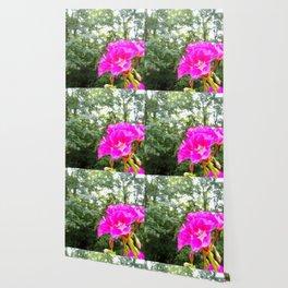 Fuchsia Flower Green Trees Wallpaper