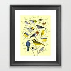New World Warblers 2 Framed Art Print